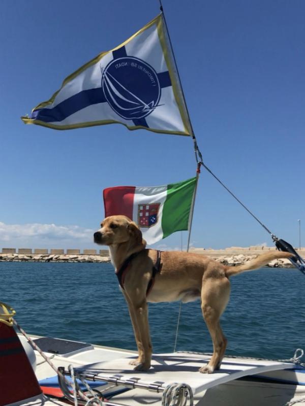 In barca con il cane Muttley
